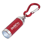 Mini Aluminum LED Light With Matching Carabiner