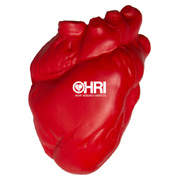 Realistic Anatomic Heart Squeezies Stress Reliever
