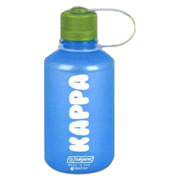 Nalgene Translucent Narrow Mouth Water Bottle - 16 oz.