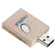 16GB Carton USB 2.0 Flash Drive