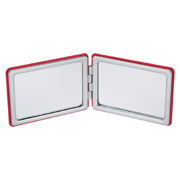 Vanity Mirror With Dual Magnification