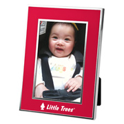 4x6 Chrome Border Picture Frame