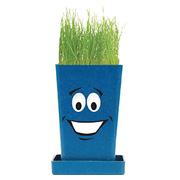 Expression Planter