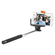 Hollywood Selfie Pole